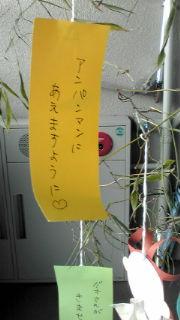七夕2.jpg