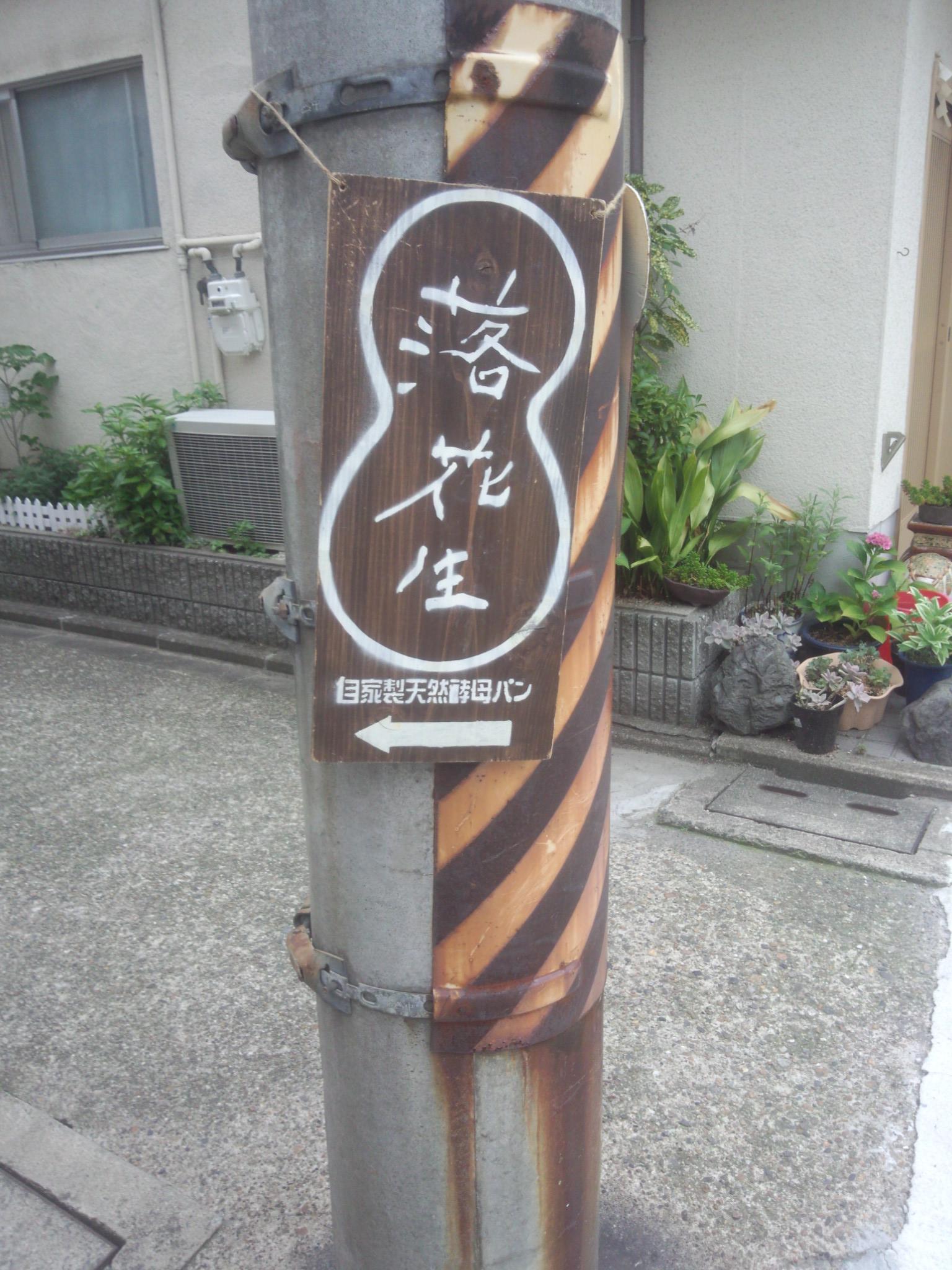 電柱 ラッカセイ2.jpg